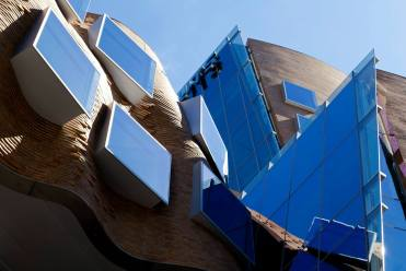 Gehry Detail